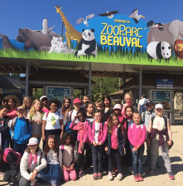 Colo spéciale animaux au Zoo de Beauval – Enfants 6 à 12 ans