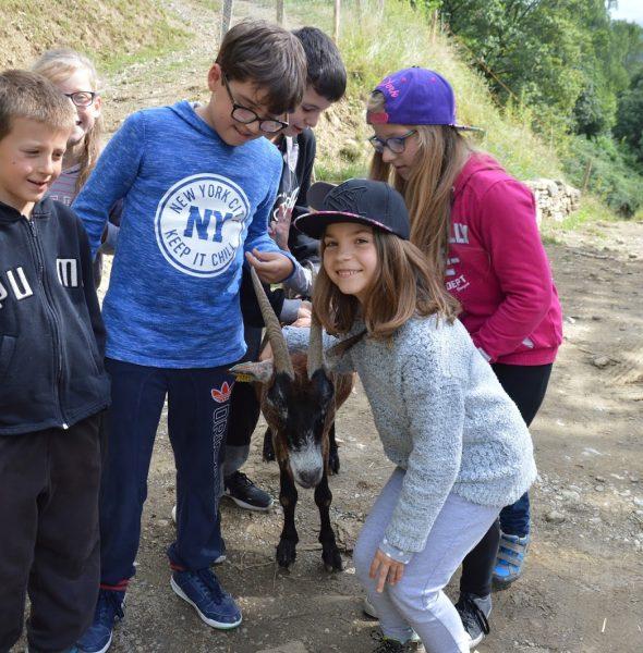 Séjour «Les P'tits Montagnards» – Enfants 6 à 12 ans