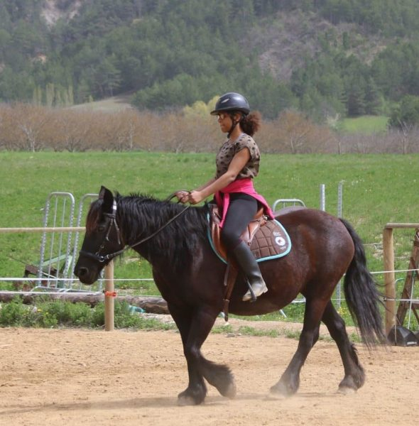 Colo «Passion Equitation !» 4/10 ans Poney ou 10/17 ans Cheval