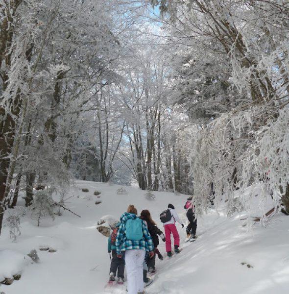 Colonie de vacances ski «Les Aventuriers Savoyards» – 7 à 13 ans