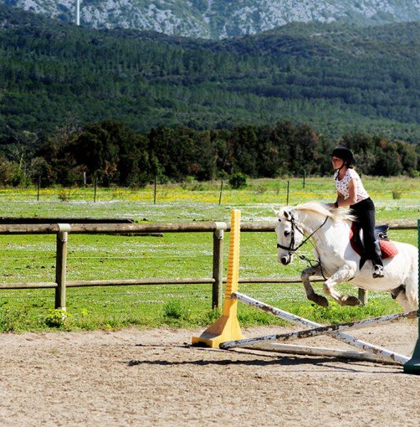 Séjour 100 % passion équitation – 6/16 ans